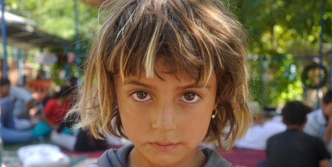 Yezidilerin hayatta kalma mücadeleleri