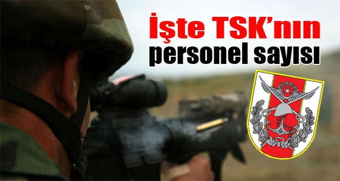 İşte TSK'nın personel sayısı