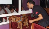 Narkotik köpekleriyle barlarda uyuşturucu uygulaması
