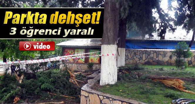 Parka yıldırım düştü: 3 öğrenci yaralı