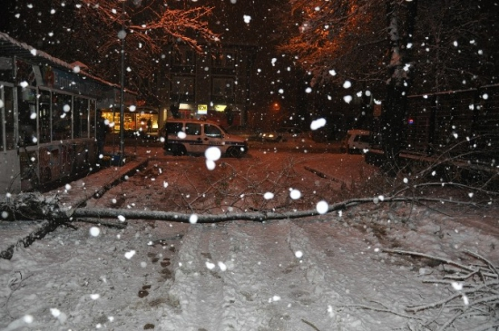 Kar Bursa'da Hayatı Felç Etti